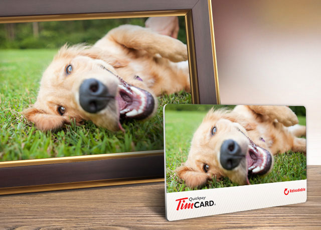 Plastic TimCard® displaying picture of Dog
